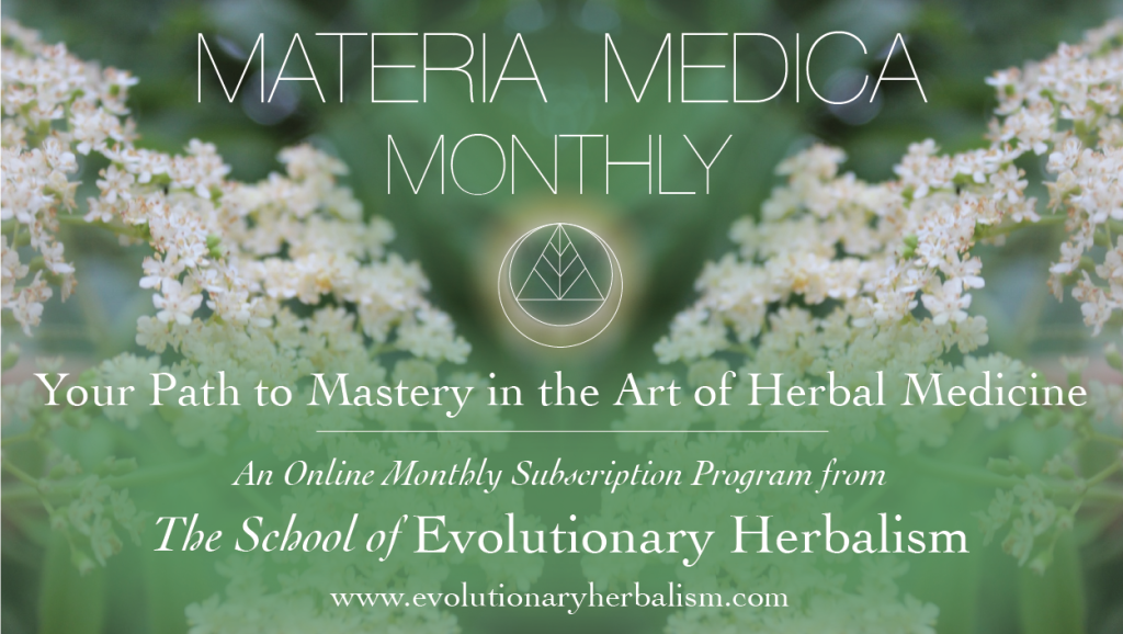 Materia Medica Monthly Facebook Thumbnail